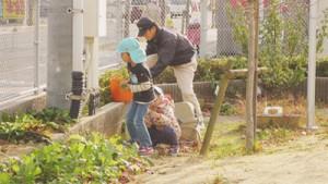 教育施設のお庭の管理