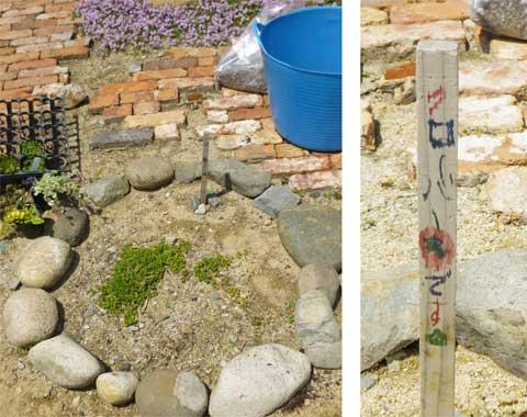 ちびっ子ガーデナーの花壇
