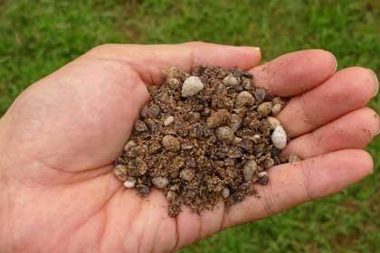 微生物肥料