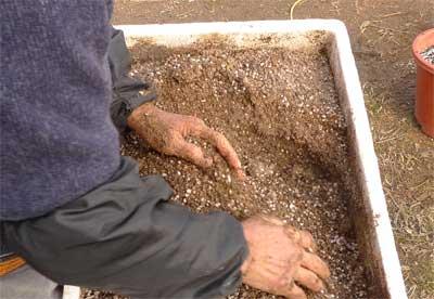 微生物肥料作り