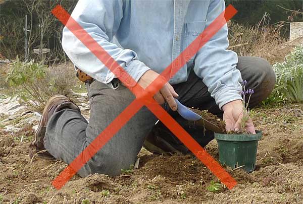 畑や庭の土はダメ