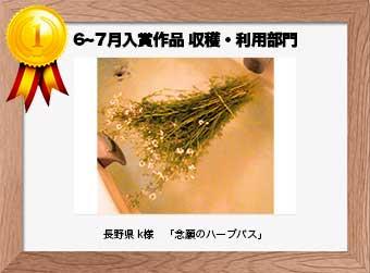 フォトコンテストエントリーNo.199  長野県 k様  収穫・利用部門   「念願のハーブバス」