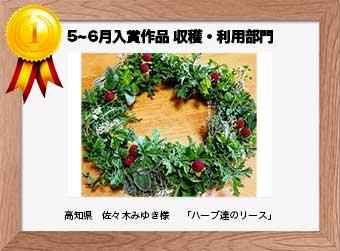 フォトコンテストエントリーNo.239  高知県 佐々木みゆき様  収穫・利用部門   「ハーブ達のリース」