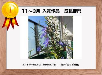 フォトコンテストエントリーNo.412  神奈川県 T様  成長部門   「負けず劣らず綺麗」