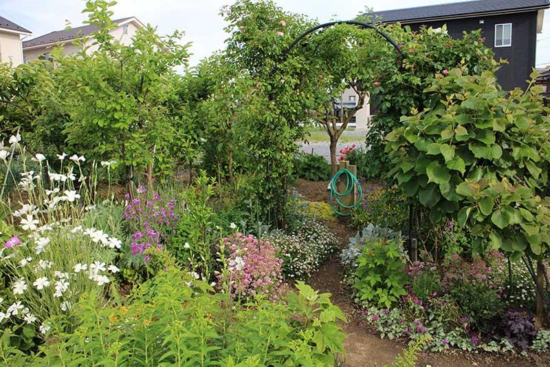 2015年春の庭