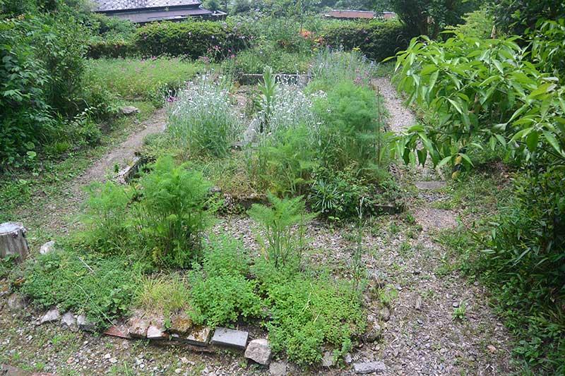 ぶた小屋の庭