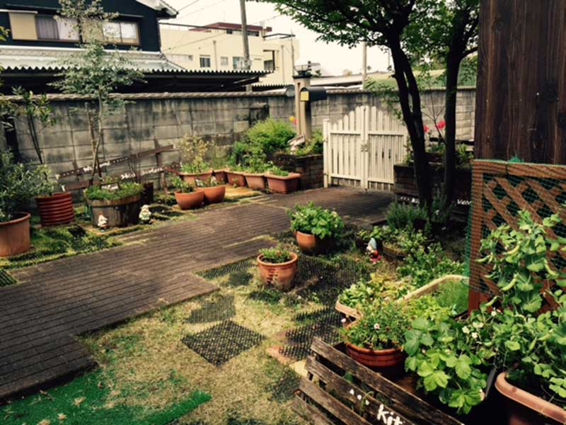 日々元気をもらう庭
